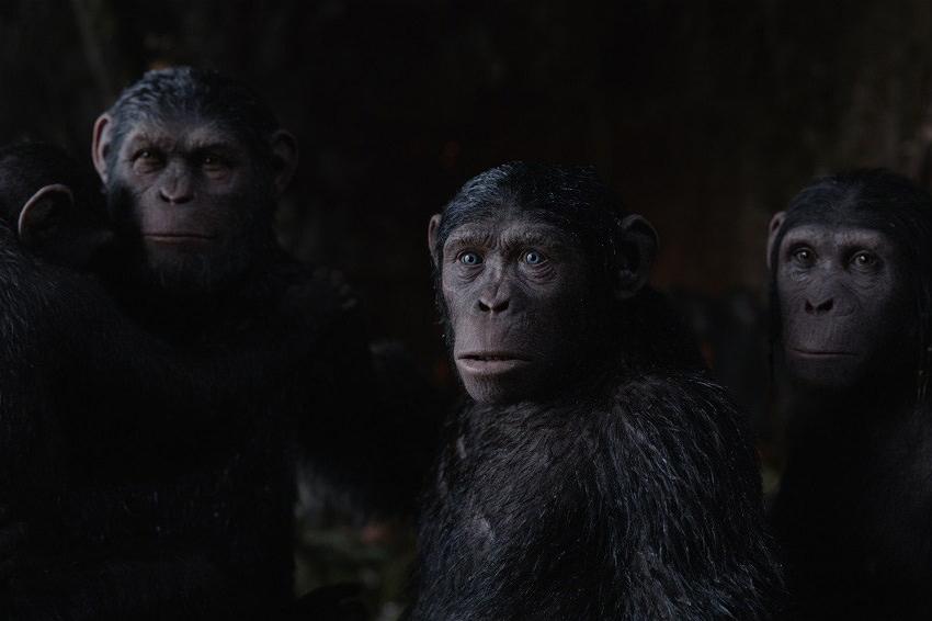caesar-family-war-planet-apes-3-still.jpg